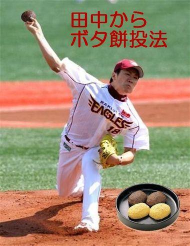 Tanakarabotamochi_2