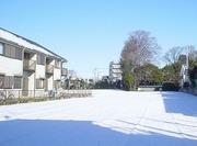 s-yukigeshiki